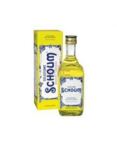SOLUZIONE SCHOUM FORTE*orale soluz 250 g